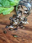 Roasted Seed Mix - high protein & salt-free